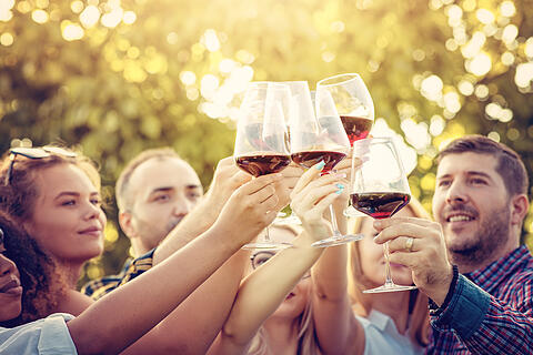 Young multi-ethnic friends having fun in a vineyard tour - Outdoar Hand Toasting of red wine before the sunset in autumn during the harvest time